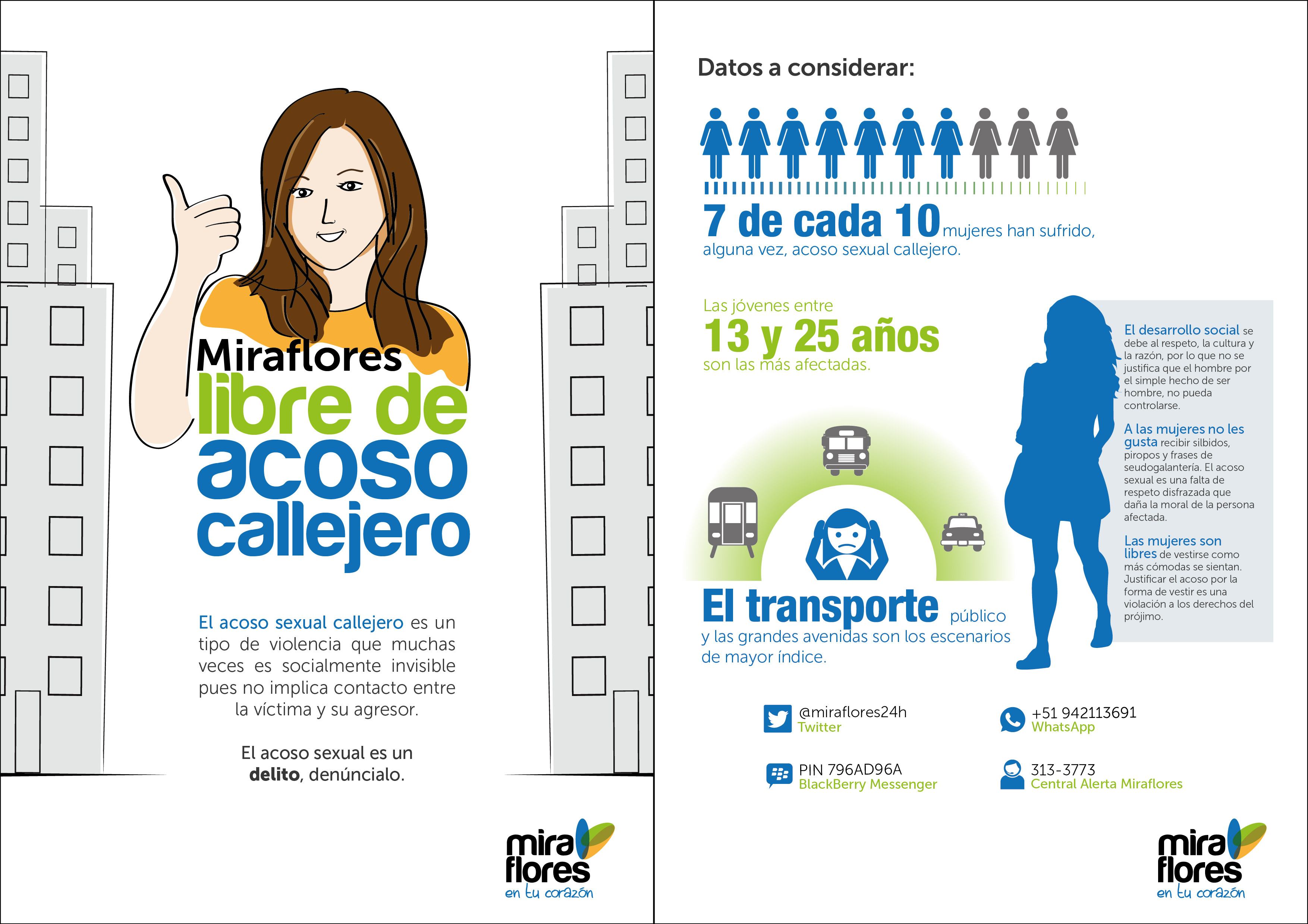 http://www.miraflores.gob.pe/Gestorw3b/files/img/8102-16360-acoso_volante-01.jpg