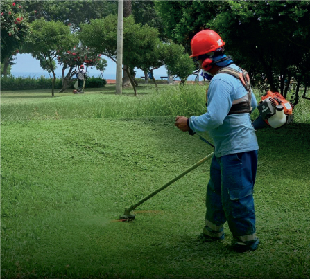 Limpieza pública y áreas verdes