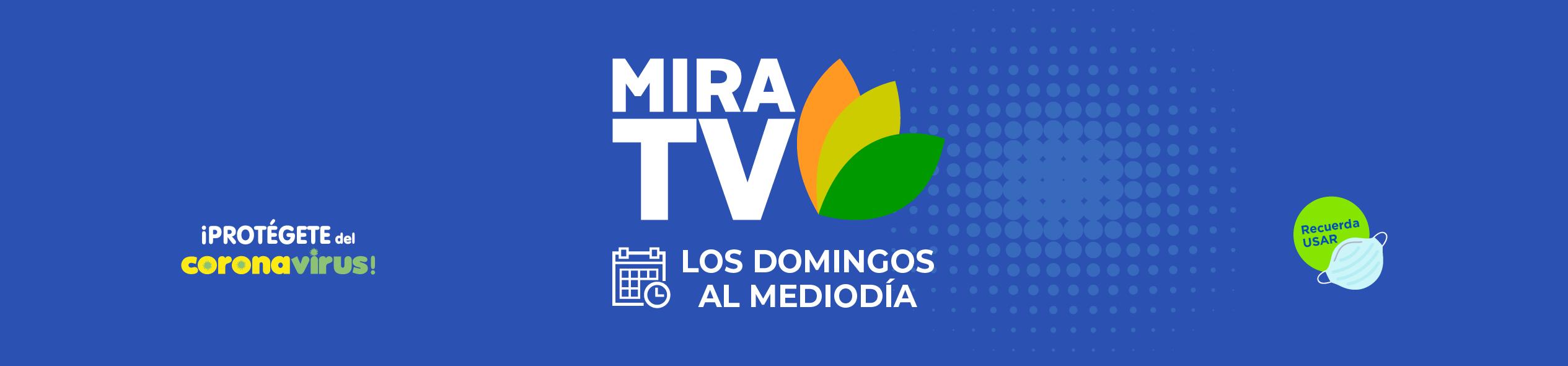 CABECERA2-MIRA-TV
