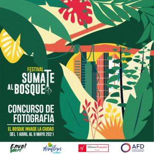 Concurso de fotografía – Festival Súmate al bosque